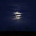 maan-klein